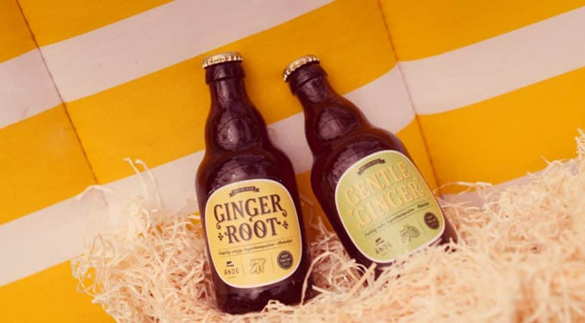 ände-ginger-root-gentle-ginger