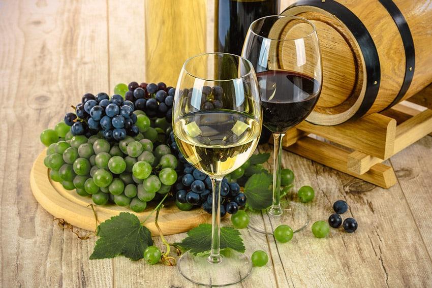 Von Santa Cruz nach Mendocino – Weinanbaugebiete in den USA